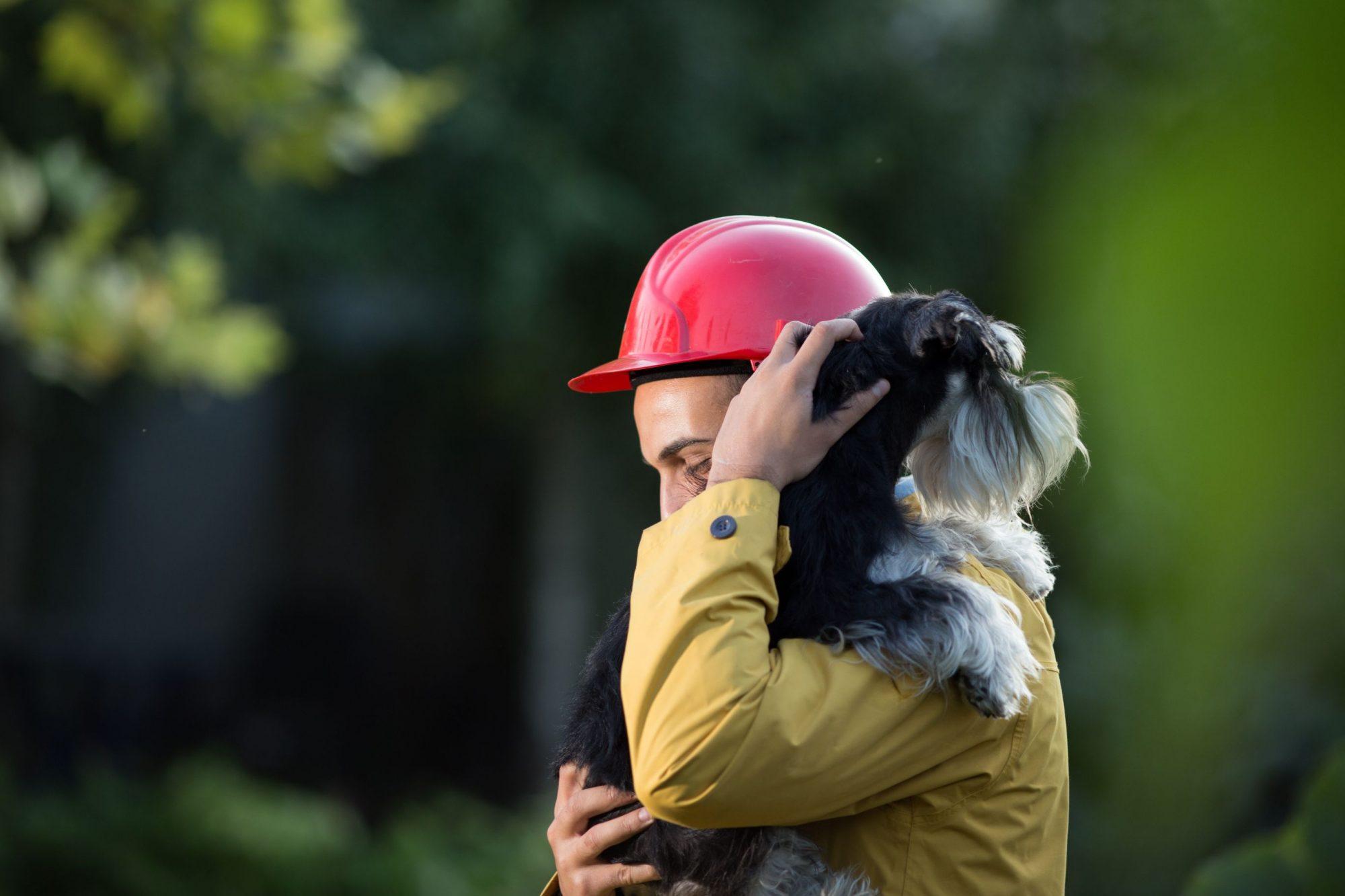 Pet emergency preparedness: A man saves a dog during an emergency.